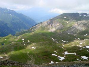 Berg11